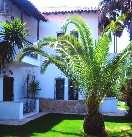 Greece Sivota Thesprotia Villa Dina Palm