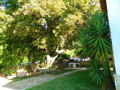 Greece Sivota Thesprotias Villa Dina Garden +BBQ