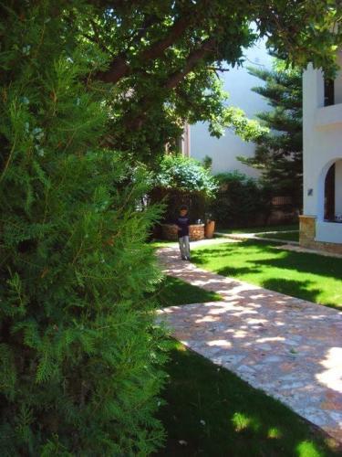 Greece Sivota Thesprotias Villa Dina Garden Path