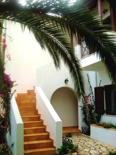 Greece Sivota Thesprotias Villa Dina Palm Tree   Stairs